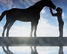 Author Guest Post: Girls and Horses – Why I Never Fell Out Of Love With Horses