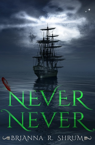 Never Never by Brianna Shrum